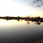 水辺の風景2013